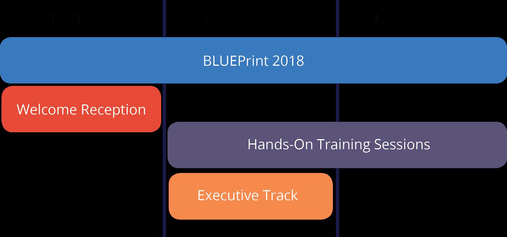BluePRINT 2018 agenda blueridgeglobal.com