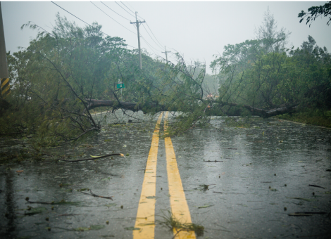supply-chain-disaster-preparedness